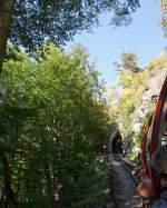 BRB Brienz Rothornbahn/172731/am-01102011-auf-bergfahrt-mit-der Am 01.10.2011 auf Bergfahrt mit der Heizöl BRB 16 zum Brienzer Rothorn, zwischen Brienz und der Station Geldried, durch den Wald,hier kurz vor dem Schwarzenfluhtunnel. Ich weiß nicht viel Bahn zusehen, aber ich möchte den Eindruck der schönen Fahrt vermitteln.