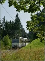 mvr-ex-mtgn---montreux---territet---glion---rochers-de-naye/283626/der-rochers-de-naye-beh-48 Der Rochers de Naye Beh 4/8 305 kommt erreicht als Regionalzug 3360 in Kürze die Haltestelle Crêt-y-Bau. 3. Aug. 2013